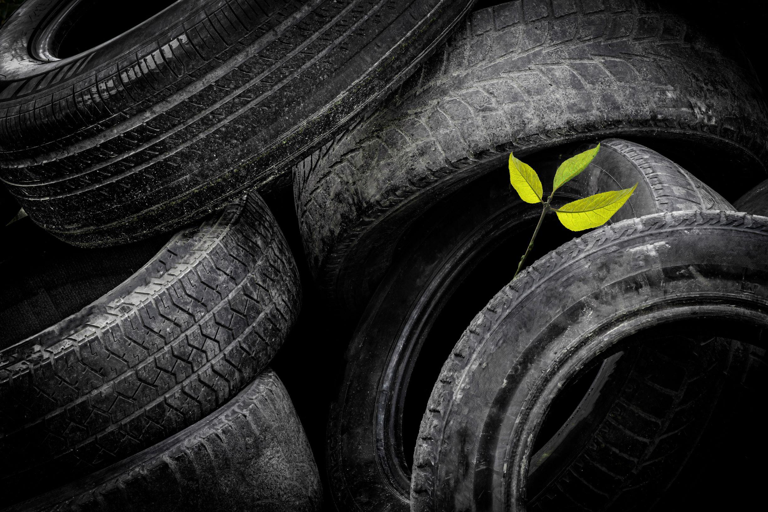 Černá skládka pneu v přírodě