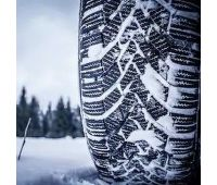 colour-picture-snow-tire-winter-260nw-251222536 (2)